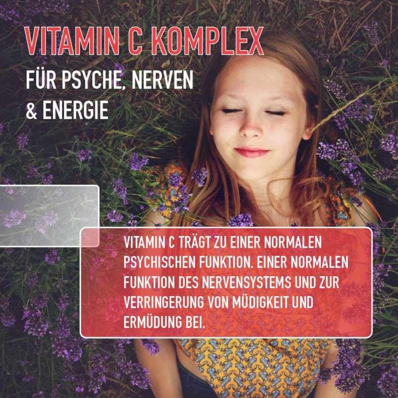 vitamin c psyche nerven energie